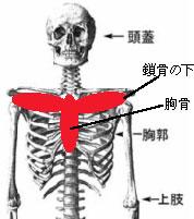 空気の乾燥と咳【埼玉県川口市の整体院・リフレッシュハウスIUGへ】