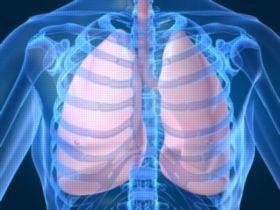 肺の機能低下を抑える